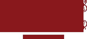 Bauchwelten Logo